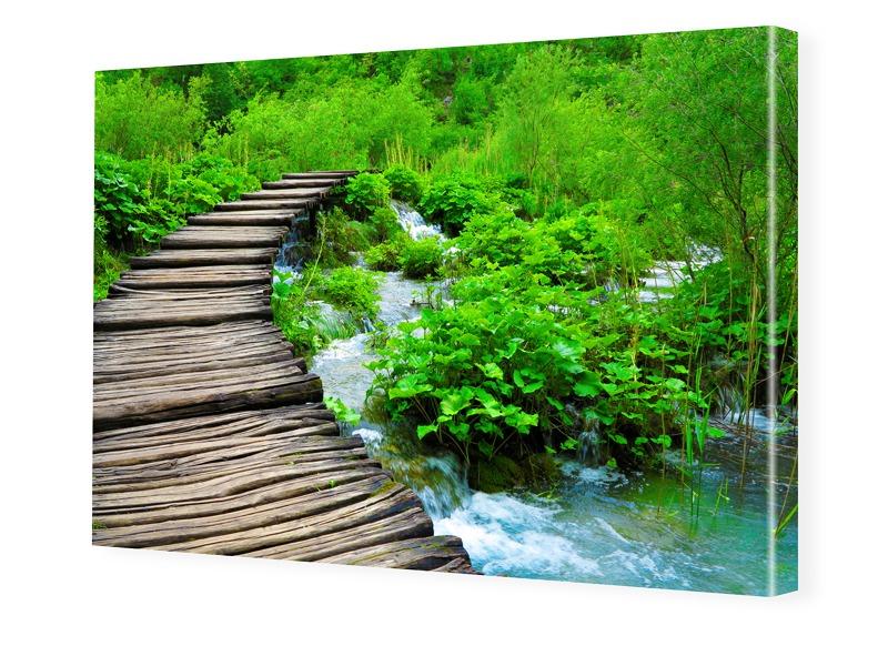 Naturbild Bilder auf Leinwand im Format 120 x 8...