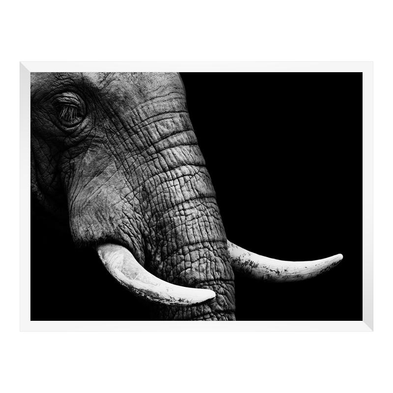 Foto im Holzbilderrahmen in weiß im Format 50 x...