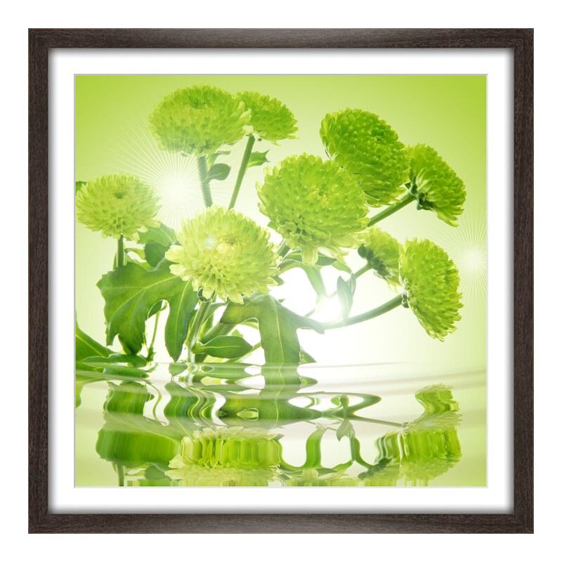 Chrysanthemen Bilder Foto im Holzbilderrahmen g...
