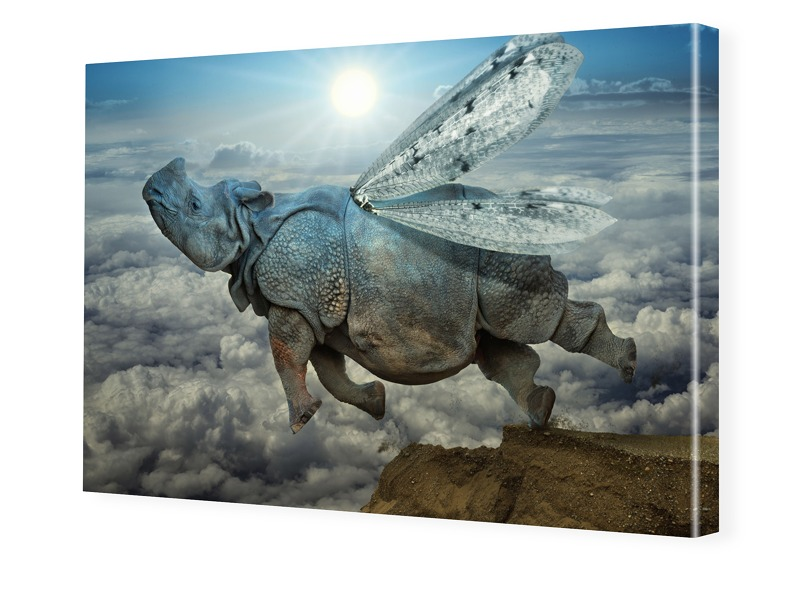 surreales Motiv Nashorn Foto auf Leinwand im Fo...