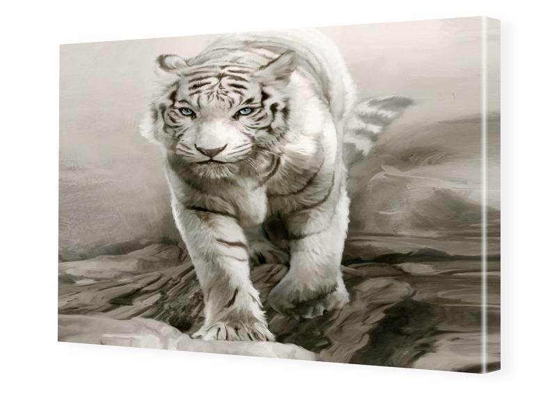 Tigerbilder Foto auf Leinwand im Format 80 x 60 cm
