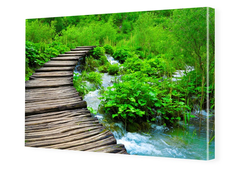 Naturbild Foto auf Leinwand im Format 80 x 60 cm
