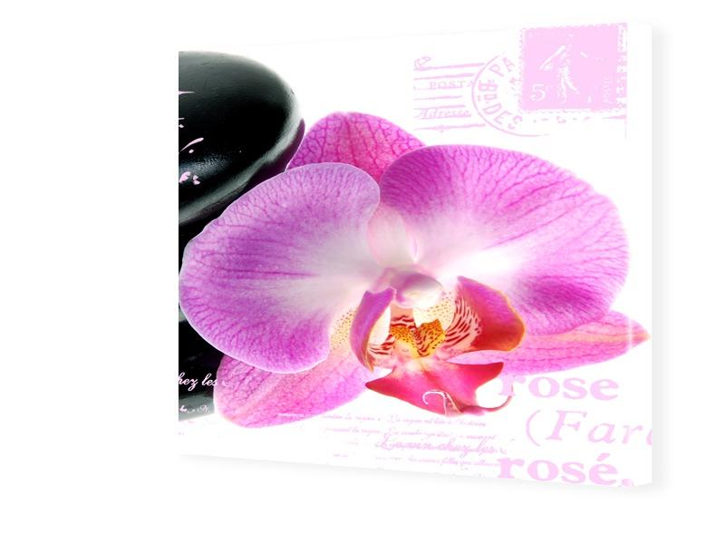 Bilder Orchideen Fotos auf Leinwand quadratisch...
