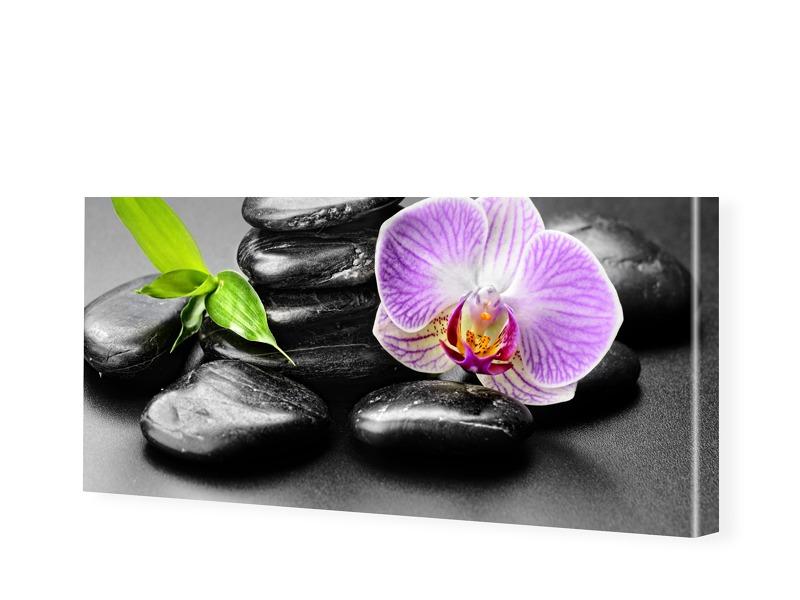 Steine Orchidee Panorama Leinwand als Panorama ...