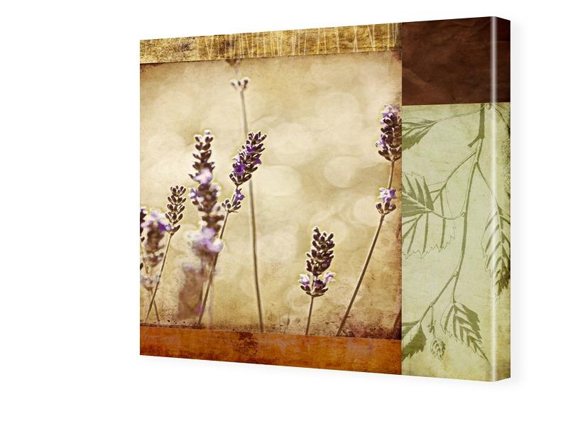 Lavendel Bilder Fotos auf Leinwand quadratisch ...