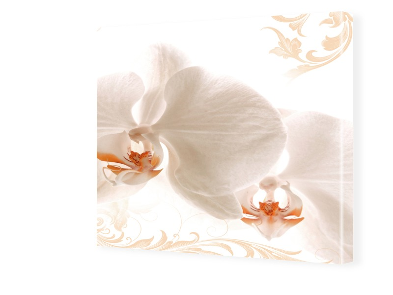 Foto Orchidee Fotos auf Leinwand quadratisch im...