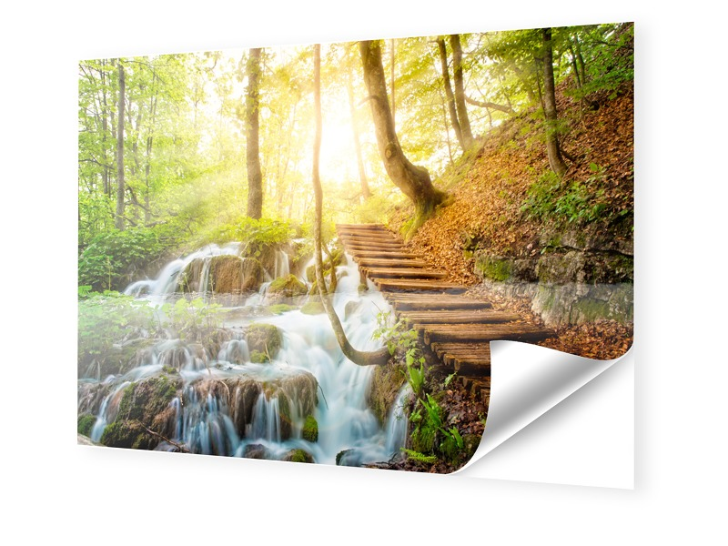 Waldweg Bild Fotos auf Folie im Format 120 x 80 cm