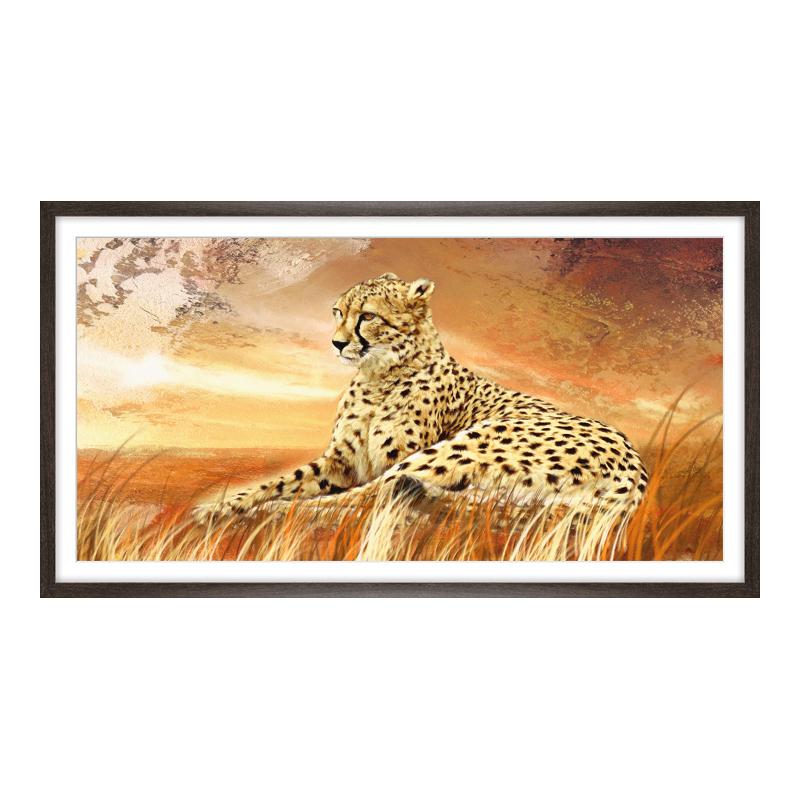 Gepard Bilder Bilder drucken im Panorama Bilder...