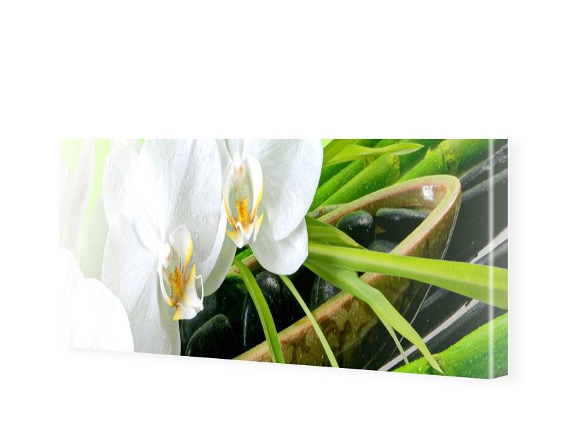 Orchideen Poster Leinwanddruck als Panorama im ...