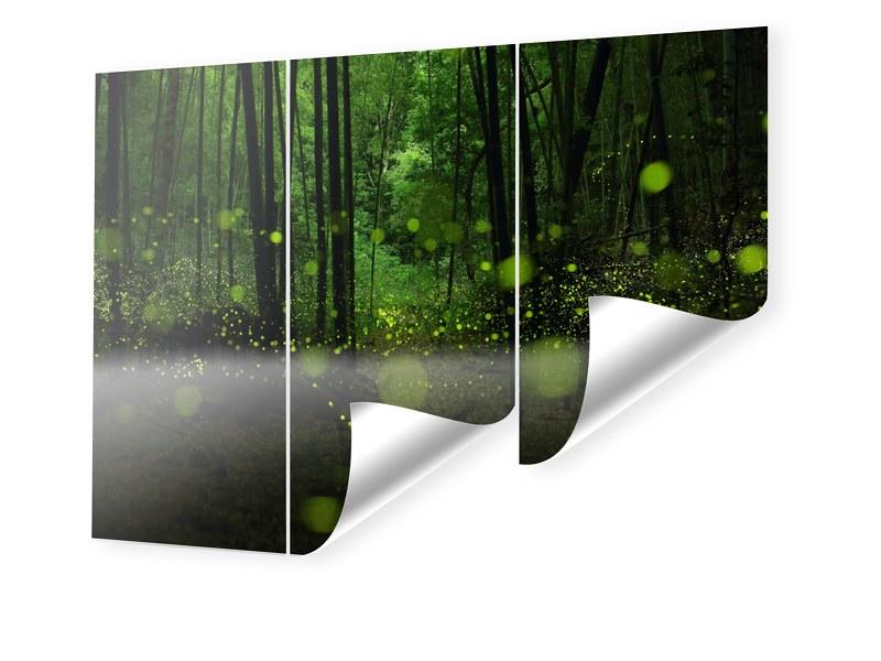 Glühwürmchen Foto Fototapeten im Format 360 x 2...