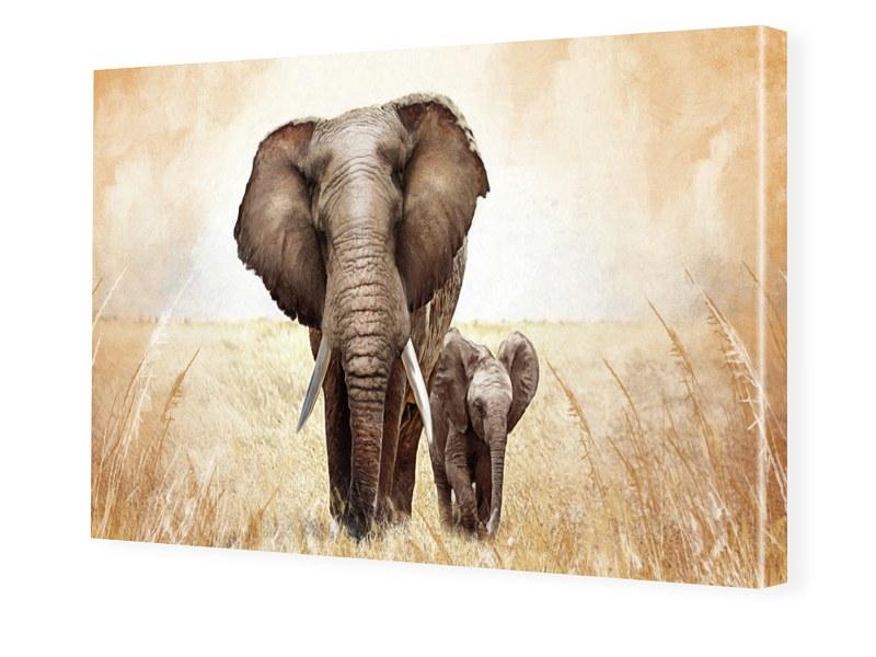 elefant bild auf leinwand preisvergleich die besten angebote online kaufen. Black Bedroom Furniture Sets. Home Design Ideas