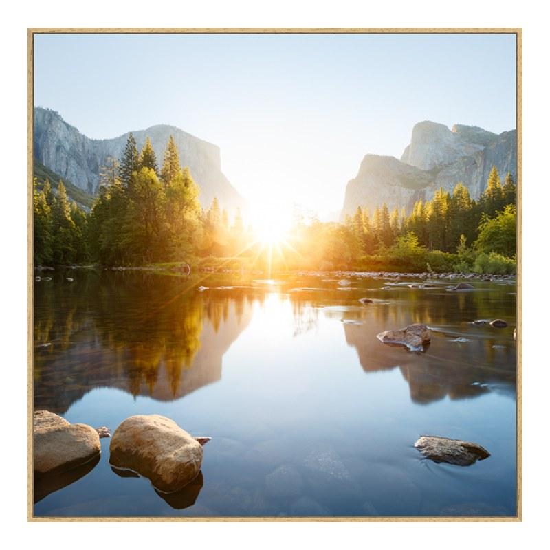 Foto auf Forex im Artbox Natur in natur im Form...