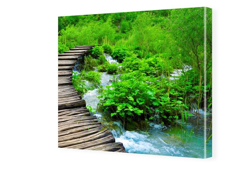 Naturbild Bild auf Leinwand quadratisch im Form...