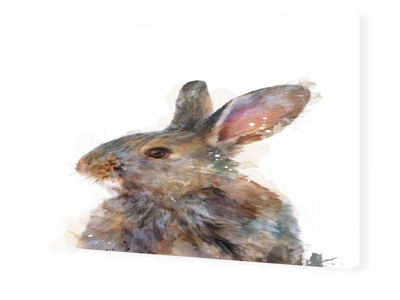 Image of Abstract Rabbit Fotoleinwand im Format 60 x 40 cm
